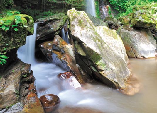 Poring Hot Springs & Kinabalu Park
