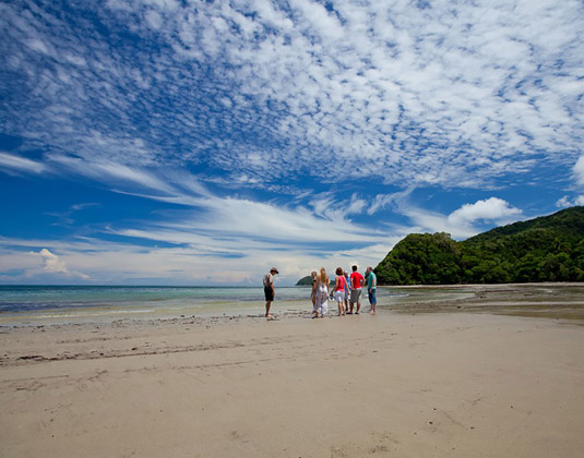 Cape Tribulation & Daintree excursion