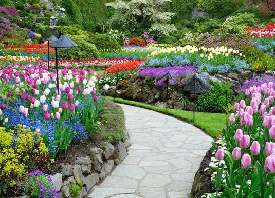 Vancouver_Island_-_Butchart_garden_in_spring.jpg
