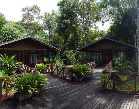 Borneo_Nature_Lodge_-Chalets.jpg