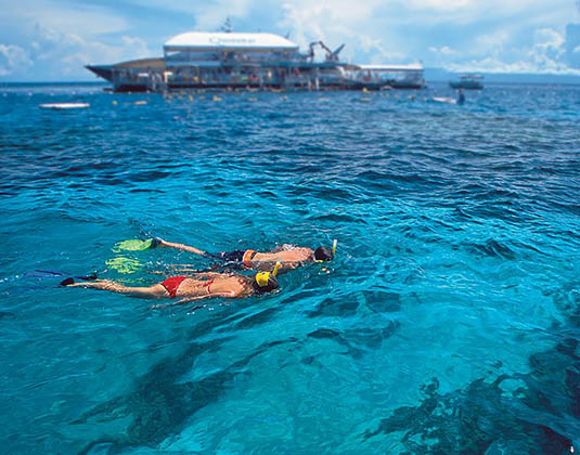 Quicksilver Outer Barrier Reef Cruise (inc lunch) excursion