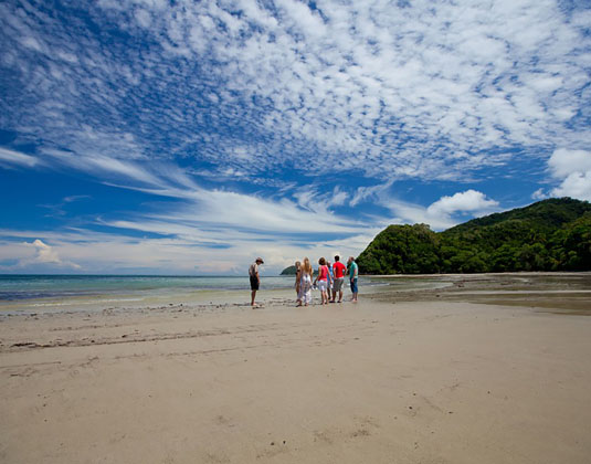 Cape Tribulation Rainforest Beach