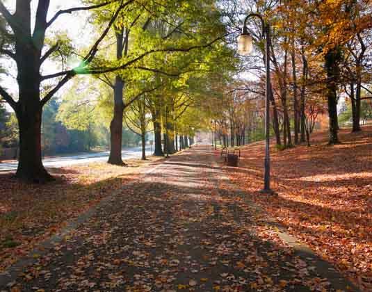 Winston_Salem_East_Coast_Cities_and_National_Parks.jpg