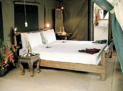 Jungle_Camp_Tent.jpg