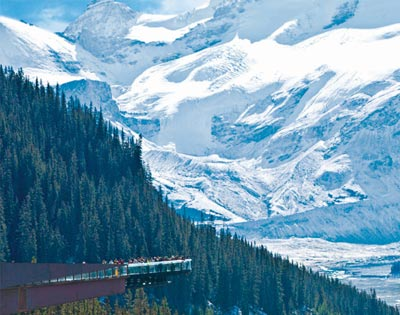 Icefields Parkway Discovery Tour Lake Louise to Jasper (inc lunch) excursion