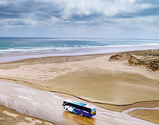 Cape Reinga via 90 Mile Beach (inc lunch) excursion