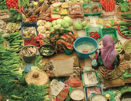 Malaysian Cooking Tour