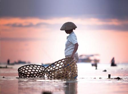 Bali seaweed farmer