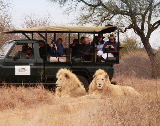 Cape Town & Kruger Holidays