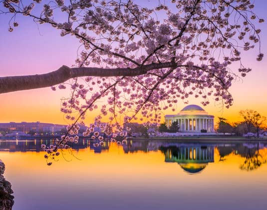 Washington,_DC_at_the_Jefferson_Memorial_East_Coast_Cities_and_NAtional_Parks.jpg