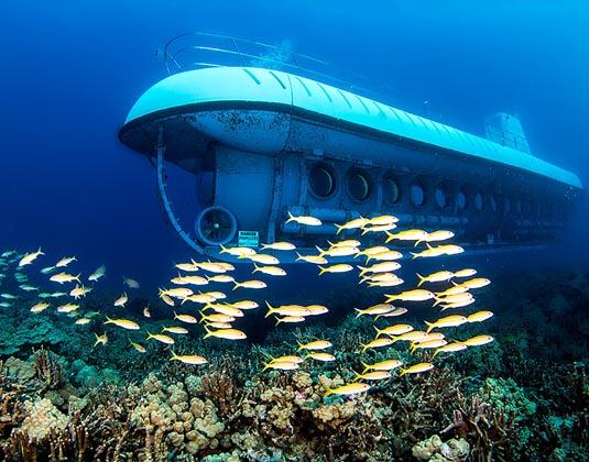 Atlantis Submarine Adventures excursion