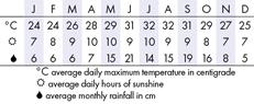 Miami Climate Chart