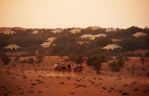 Al Maha Desert Resort & Spa  - Camel Ride