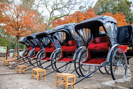 Rickshaws-in-the-park-of-Na.jpg
