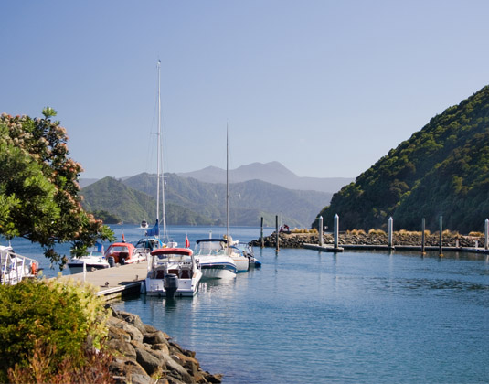 Picton_Harbour.jpg