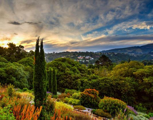 Botanic_garden,_Dunedin.jpg