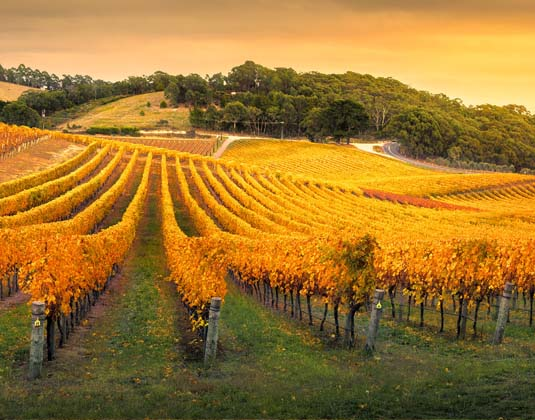 Adelaide_Hills.jpg