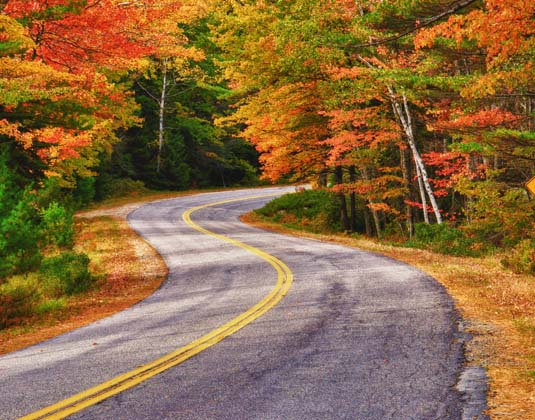 New_England_Fall_road.jpg