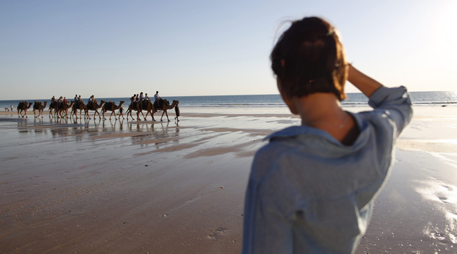Camel Train at sunset, Cable Beach