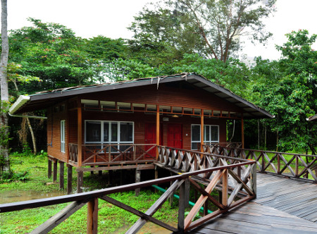 Borneo Nature Lodge Holidays
