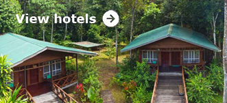 Browse hotels in Sandakan