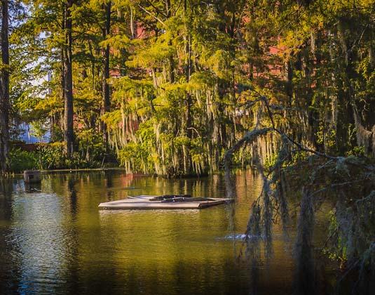 Cypress Lake, Lafayette