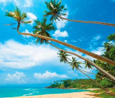 South West Coast Beaches