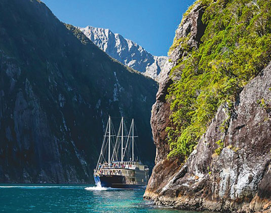 Milford Sound Nature Cruise excursion