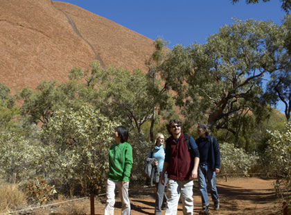 Uluru Morning Guided Base Walk excursion