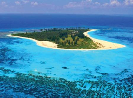 Bird-Island.jpg