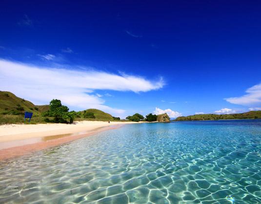 Komodo - Pink Beach