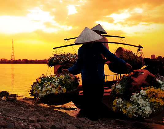 Vietnam flower seller
