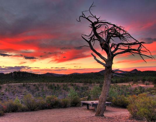 Flinders_Ranges_dusk.jpg