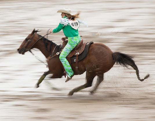 Calgary_Stampede_-_Horse_and_Rider.jpg