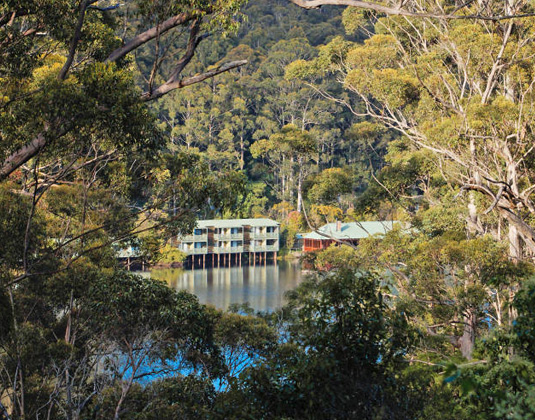 Karri-Valley-Resort,-Pember.jpg