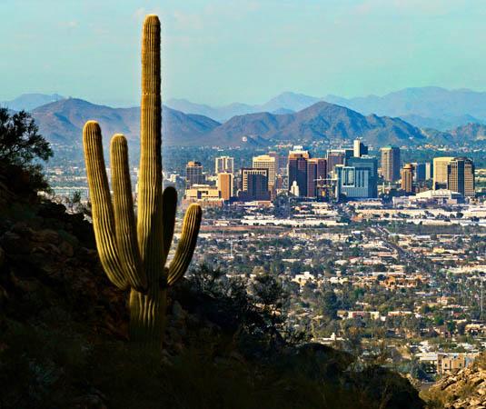 Arizona,_Phoenix_Skyline.jpg