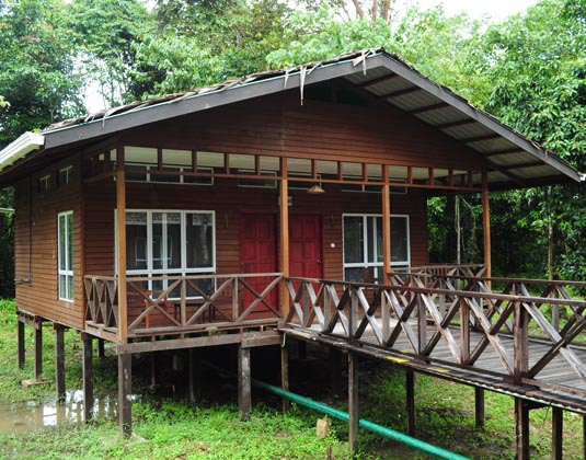 Borneo_Nature_Lodge_-_Chalet.jpg