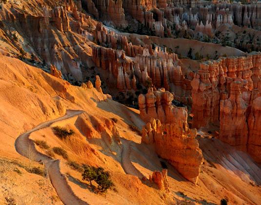 Navajo_Loop_Trail_at_dawn_at_Bryce_Canyon_National_Park.jpg