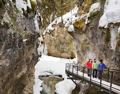 Johnston Canyon Ice Walk excursion