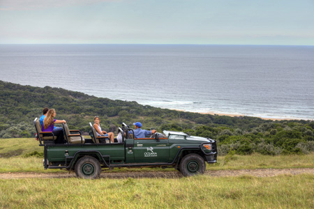 Oceana_Beach_and_Wildlife_Reserve_game_drive.jpg