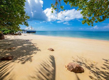 coco-de-mer_beach_3.jpg