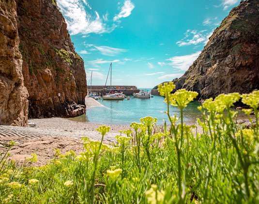 Day trip to Sark with Lunch excursion
