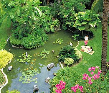12850_5_Shangri-La_Tanjung_Aru_Garden.jpg
