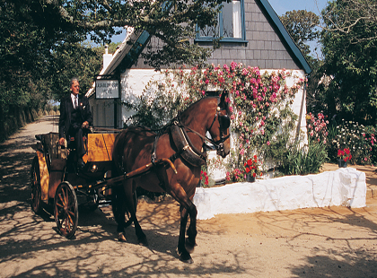 9725_4_La_Sablonnerie_Horse_and_Carriage.jpg