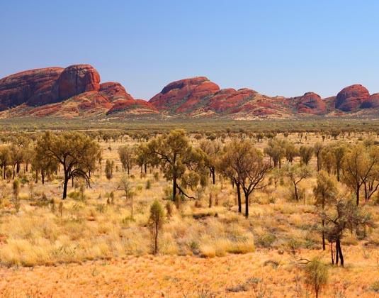 Olgas_Outback.jpg
