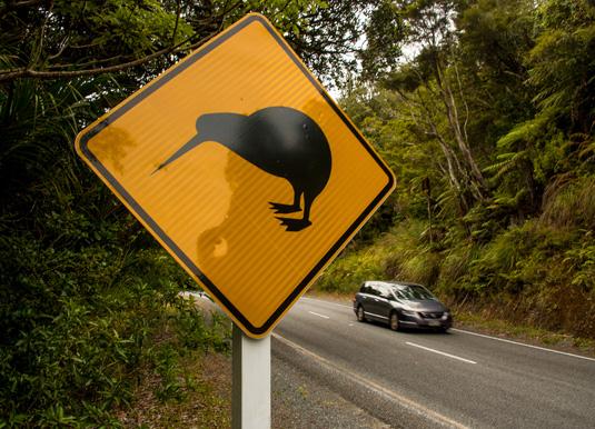 Northland,-New-Zealand.jpg