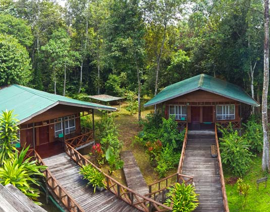 Borneo_Nature_Lodge_-_Chalets.jpg