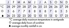 Rarotonga Climate Chart