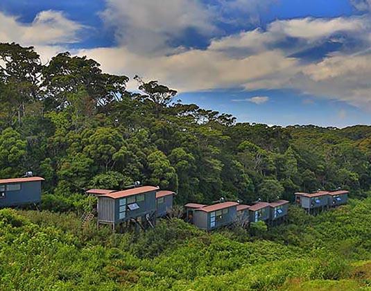 Rainforest_Eco_Lodge_Sinharaja_-_Exterior.jpg