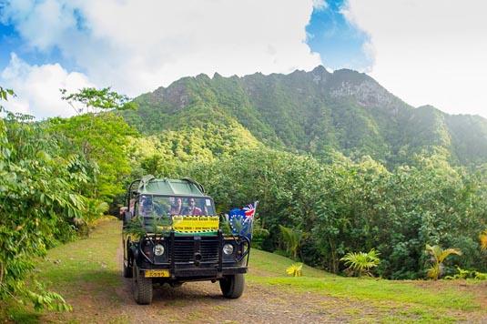 Raro Safari 4WD Inland Tour excursion